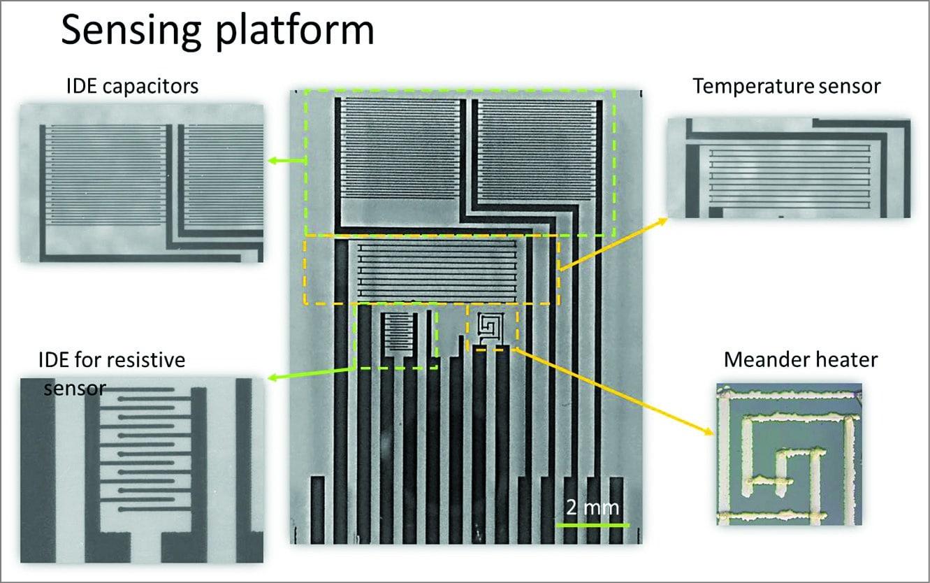 Flexible glass sensor (Image courtesy: httpslmts.epfl.ch)
