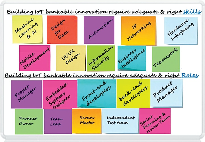 Inputs on right skills and roles required to develop the bankable innovation